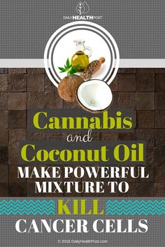 Cannabis And Coconut Oil Make Powerful Mixture To Kill Cancer Cells via @dailyhealthpost