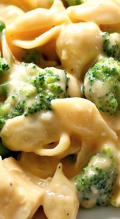 Perfectly creamy shells and cheese with chicken and broccoli. Everyone loves this easy weeknight meal! ❊