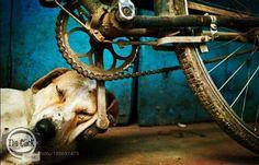 Hope of dreams by MeBantawa