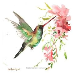 This is not a copy or print or watercolor from photo art ! The painting is one of my original watercolors, and i never repeat the same artwork Watercolor Hummingbird, Hummingbird Art, Watercolor Animals, Watercolor And Ink, Watercolor Flowers, Watercolor Paintings, Bird Paintings, Hummingbird Illustration, Watercolor Tattoo