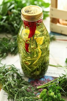 lekkere kruiden olie die kan je echt zelf maken Flavored Oils, Infused Oils, Rapeseed Oil, Herb Butter, Butter Roll, Herbal Oil, Spices And Herbs, Healing Herbs, Growing Herbs