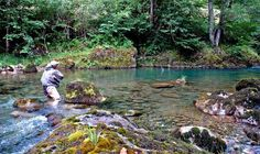Fly Fishing in France's pyrenees region with Club Fish World