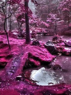 Moss Bridges, Ireland