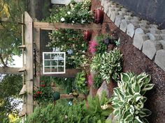 8 Remarkable Tips AND Tricks: Front Garden Landscaping Low Maintenance succulent garden landscaping awesome. Landscaping Around House, Tropical Landscaping, Landscaping With Rocks, Backyard Landscaping, Backyard Patio, Landscaping Ideas, Backyard Ideas, Outdoor Spaces, Outdoor Living