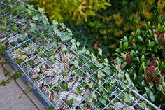 Metal, kamień i rośliny – połączenie idealne  #diy, #gabion, #green, #modern