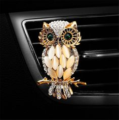 77 Best Owls images in 2019 | Barn owls, Owl bird, Owls