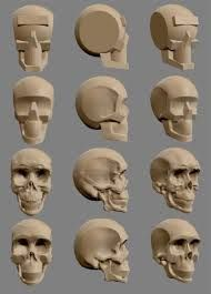 So hey guys, this is my first sculpt in zbrush and I would appreciate any critiques and advices. Wood Carving Faces, Wood Carving Patterns, Bone Carving, Carving Wood, Skull Anatomy, Anatomy Art, Sculpture Clay, Sculptures, Anatomy Sculpture
