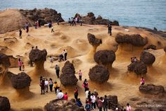 Yehliu is a cape on the north coast of Taiwan in the town of Wanli between Taipei and Keelung. The cape, known by geologists as the Yehliu Promontory, forms part of the Taliao Miocene Formation. It stretches approximately 1,700 meters into the ocean and was formed as geological forces pushed Datun Mountain out of the sea. (wiki)