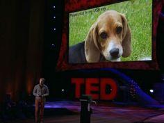 Dez TED Talks imperdíveis sobre segurança da informação