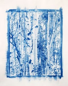 Limited Edition Cyanotype Print taken near Moab, Utah. Hand signed and numbered. Edition of 20