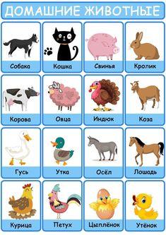Learning Languages Tips, Peanuts Comics, Album, Art, Art Background, Kunst, Performing Arts, Card Book, Art Education Resources