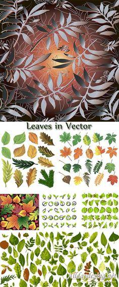 Зеленые листья и цветная осенняя листва - векторный клипарт