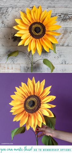 DIYn Jumbo Crepe Paper Sunflower - www.LiaGriffith.com #diytutorial #paperflower #paperflowertutorial #papersunflower #DIYFall #FallDIY