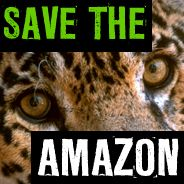 Please join in standing with the people of Brazil campaigning for a new law to help save this rainforest. http://www.greenpeace.org/international/en/campaigns/forests/amazon/