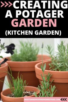 Designing and planning a potager garden layout. How to set up a French kitchen garden at home. The design ideas for creating a rustic home garden. #potager #kitchengarden #gardening Potager Garden, Herb Gardening, Organic Gardening, Herbs Garden, Dish Garden, Indoor Gardening, Healing Herbs, Medicinal Herbs, Herb Garden Design