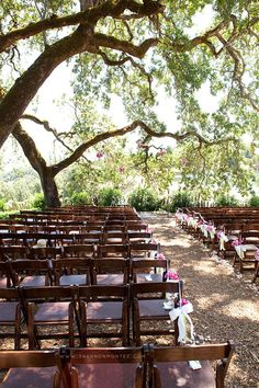 wooden chairs for ceremony?