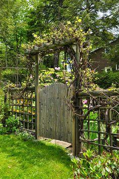 Grape Vine Gate