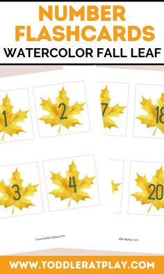 These Watercolor Fall Leaf Number Flashcards are a great, visual way to learn numbers! They're perfect for learning to count to 20. Cut out, laminate (optional) and hang as a garland for a beautiful Fall number flashcard display! Or use counting chips or blocks along with the flashcards to help kids learn to count. *Numbers 1-20 on a yellow maple leaf. *Best if printed with color printer. Number Activities, Preschool Activities, Number Flashcards, Counting To 20, Learn To Count, Learning Numbers, Toddler Preschool, Kids Learning, Autumn Leaves