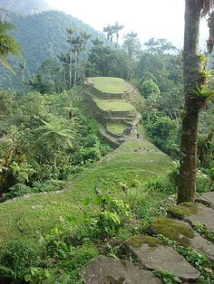 Ciudad Perdida or Lost City Teyuna, in the jungle of northern Colombia's Santa Marta Sierra Nevada mountain range Colombia South America, Latin America, Beautiful World, Beautiful Places, Colombian Cities, Cool Pictures Of Nature, Travel Sights, Lost City, Vacation Spots
