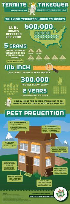 Termite prevention; termite damage. Go to http://activepest.com.au/termites/ for more information.