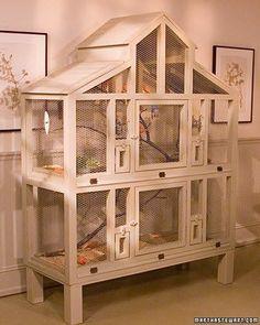 Lucky birds, i love animal habitats<3 #buildaviary #howtobuildanaviary #aviariesideas
