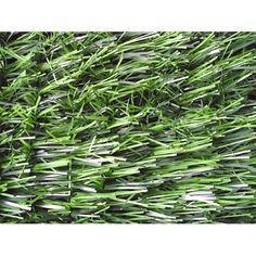 Plot Manzo 8002 m, tráva, svetlozelená How To Dry Basil, Herbs, Herb, Medicinal Plants
