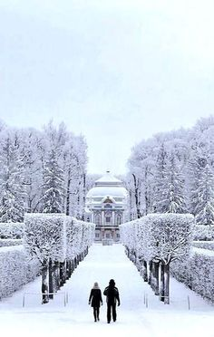 Pushkin Park in winter - Saransk, Mordovia, Russia