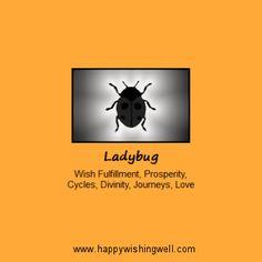 Spirit of Ladybug or Ladybird, info link to web page about the ladybug animal spirit guide or totem animal, and the meaning of ladybugs or ladybirds in mature spirituality and folklore. http://www.happywishingwell.com/madamhelga/ladybug.html .