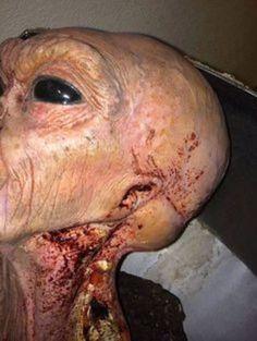 Mas há imagens reais, segundo o ufólogo, dos alienígenas