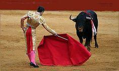 El matador usa la capa para controlar el toro en la plaza de toros. El toro corre a las cosas que se mueven.