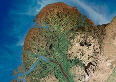 A delta in the Yukon River, Alaska