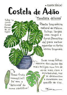 – Gardening Tips Eco Garden, Flower Pot Design, Inside Garden, Plants Are Friends, Green Life, Types Of Plants, Green Plants, Botany, Vegetable Garden