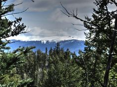 """Trees-YES. Power-YES. Phone-YES. Spectacular property? YES!!! Over 4.5 acres of jaw dropping divide views & wall-to-wall mature spruce, pine & aspen. When you think of your dream lot, this is it. Very private cul-de-sac location, one of your """"neighbors"""" is an 80 acre ranch. One of the finest lots in Indian Mtn. Gotta see it!!!  EZ drive from Denver, convenient to Breck for skiing, close to all the outdoor activities that Park County offers. Year-round access, county maintain..."""