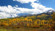 A glimpse of last year's autumn majesty and snowcapped peaks. Photo credit: Gunnison-Crested Butte Tourism Association
