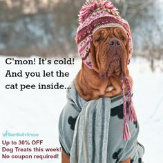 Let your #dog warm and keep boredom away this winter with a natural, durable dog chew from BBS. This week we've got great deals like 30% off Beef Tendons! Only $0.75 a piece!