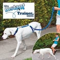 Instant Trainer Dog Leash 30 Lbs Stop Pulling Dog Walk