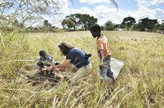 Parque Nacional da Gorongosa, em Moçambique. No sistema educacional aprende-se a teoria, mas o ensino é pobre em praticidade - não sujamos o suficiente as mãos. Como a maioria das crianças na escola aprendemos a importância das árvores e a parte que elas fazem pelo meio ambiente. Mas há uma terrível ironia em aprender isso no papel.