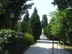 Luigi Cazzavillan Park in Bucharest Bucharest, Four Seasons, Luigi, Sidewalk, Colours, Park, Seasons Of The Year, Sidewalks, Parks