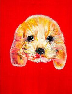 《闪耀的狗》Shining Dog 30cm x 40cm  布面油画  Oil on Linen