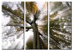 Picture Sensations Framed Huge 3-Panel Sun Tree Rays of Light Giclee Canvas Art -- $119