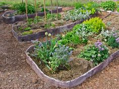 How to make ferrocement garden beds « Milkwood: permaculture farming and living
