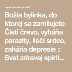 Božia bylinka, do ktorej sa zamilujete. Čistí črevo, vyháňa parazity, lieči srdce, zaháňa depresie :: Svet zdravej spirituality Nordic Interior, Atkins Diet, Healing Herbs, Natural Medicine, Good Advice, Natural Remedies, Detox, Health Fitness, Healthy