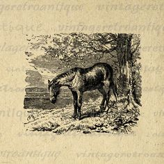Antique Horse Digital Image Download by VintageRetroAntique