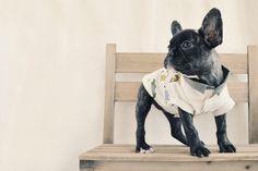Oh Basics Shirt / Safari Jungle by ohpopdog on Etsy
