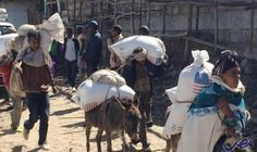 """أثيوبيا ننتظر ردّ مصر حول نشاط """"الأمهرا""""…: أكدت الحكومة الإثيوبية إنها تتعاون إيجابيًا مع مصر، لكنها في نفس الوقت تنتظر ردًا على طلب تقدمت…"""