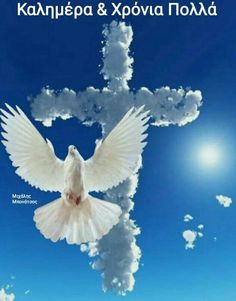 Gods Love, Cute Pictures, Bird, Animals, Poster, Cross Tattoo Designs, Angel Wings, Animales, Love Of God