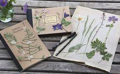 Hübsches Gartentagebuch | Mein schönes Land bloggt