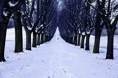 Minde touch cold love.... by dudumpie, via Flickr