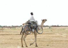 Camel back bike rack.