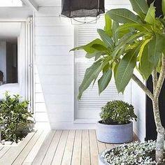 Pergola For Car Parking Code: 9678215497 Outdoor Areas, Outdoor Rooms, Outdoor Living, Landscape Design, Garden Design, Porches, Three Birds Renovations, Deco Nature, Pergola